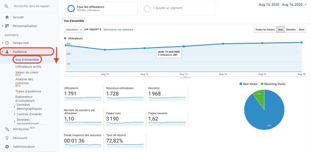 Rapport Audience dans Google Analytics. Cette capture d'écran montre le nombre de visiteurs nouveaux et connus.]
