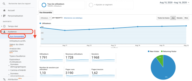 Grafico Google Analytics - panoramica pubblico. Questa schermata mostra il numero di visitatori nuovi e ricorrenti.
