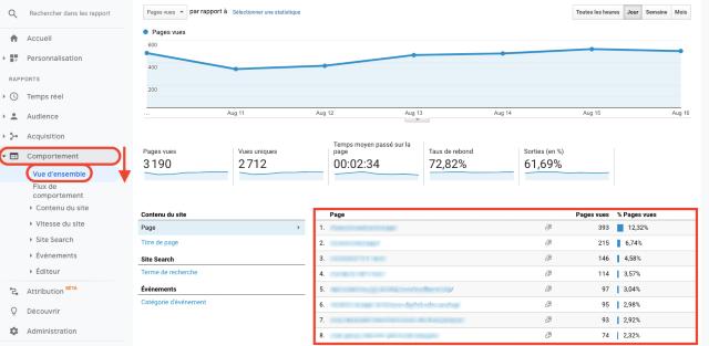 Grafico Google Analytics - panoramica visualizzazioni per pagina tramite url. Questa schermata mostra il numero di ricerche sul sito ordinate per url.