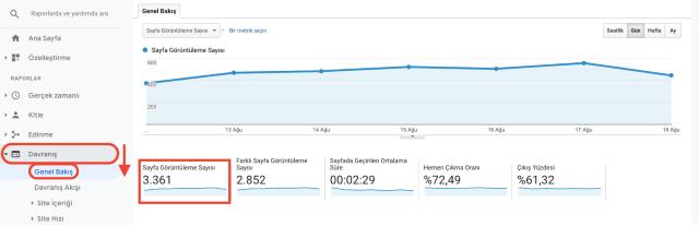 Google Analytics sayfa görüntüleme genel bakış tablosu. Bu ekran görüntüsü sayfa görüntülemelerinin Google Analytics'te nasıl ölçüldüğünü gösterir.
