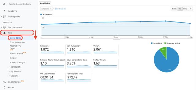Google Analytics kullanıcılara genel bakış tablosu. Bu ekran görüntüsü yeni ve geri dönen ziyaretçilerin sayısını gösterir.