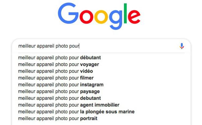 Résultats de recherche Google. Exemple de recherche de mots-clés longue traîne