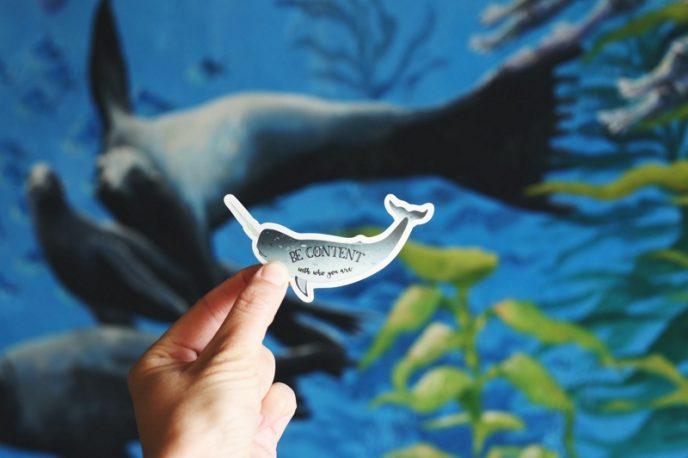 una pequeña pegatina con la forma de un delfín que dice: «Be content with who you are» (Sé feliz de ser quien eres). Crear un calendario editorial con ideas de contenido auténticas es esencial para bloguear.