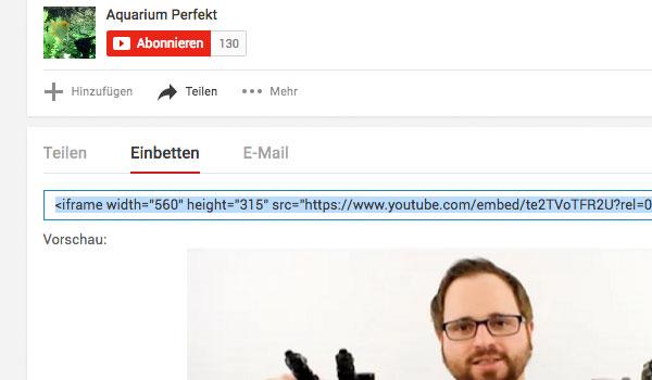 Integration Video Youtube