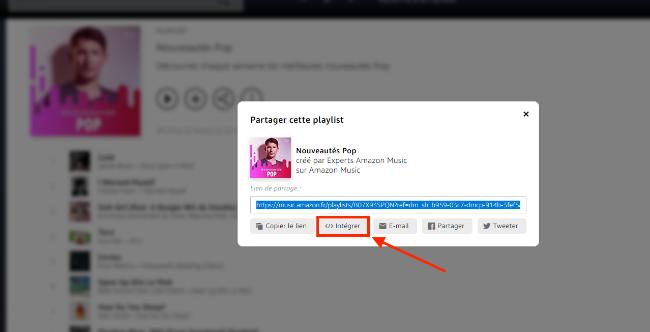 music-playlist-widget-fr-3