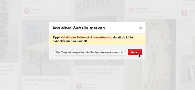 Pinterest affiliate links hinzufügen Browser