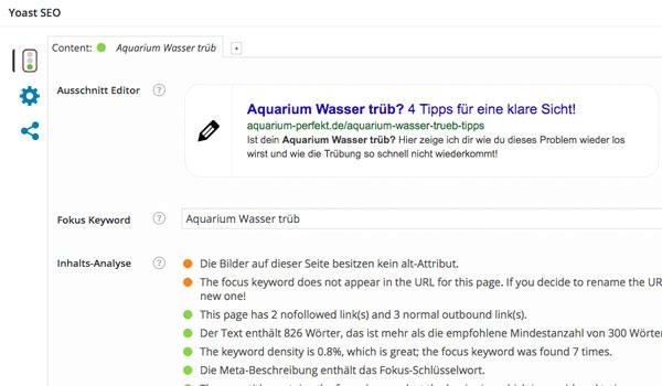 SEO Optimierung Blog Plugins