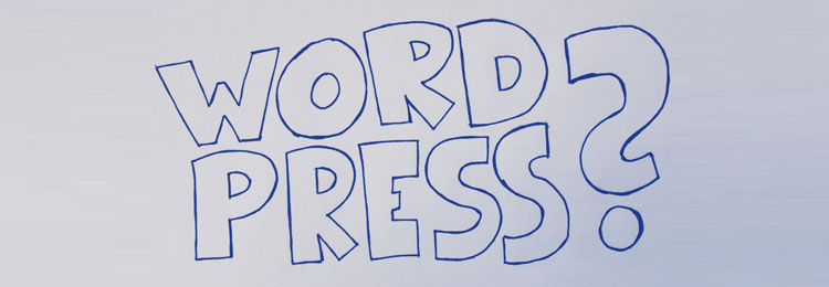 Parte 11: Guida per WordPress e procedura di installazione